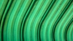 Wallpaper grün